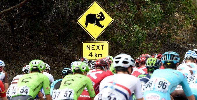 Phil Anderson Cycling tours and Ride International tours at the Toiur down Under